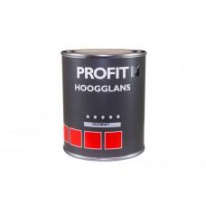 PROFIT HOOGGLANS ROOMWIT 0.75