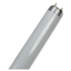 OSRAM L LAMP 36W/827 120CM