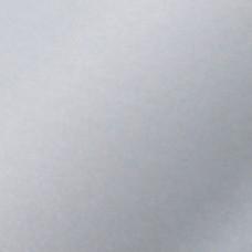 GLADDE PLAAT ALU 120X1000X0 5