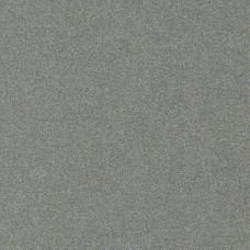 GLADDE PLAAT,STAAL RUW,250X500